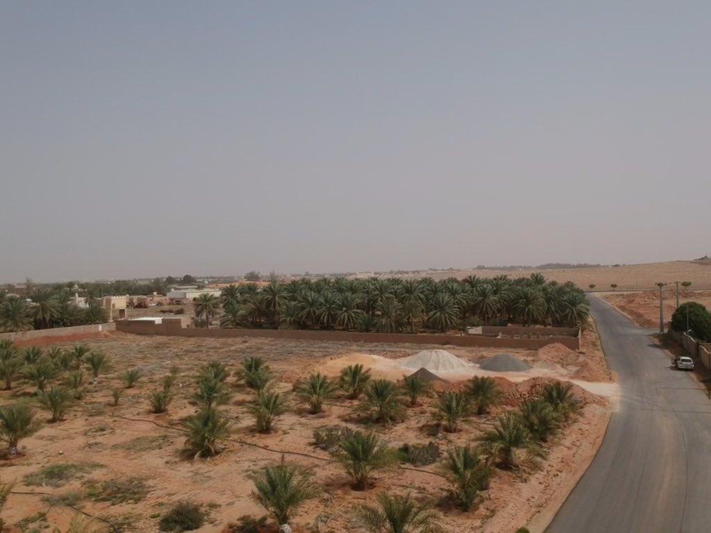 للبيع ارض زراعية مملوكة بصك شرعي الموقع: شمال الهلالية